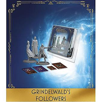 Grindelwald's Followers Exp Harry Potter Miniatures Adventure Game (HPM)