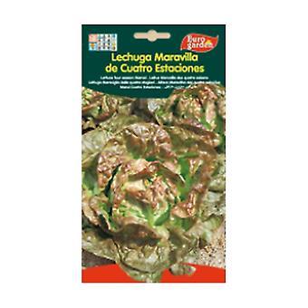 Four Seasons Wonder Lettuce 5 g