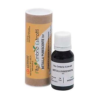 Birch Pubescent Fee 15 ml