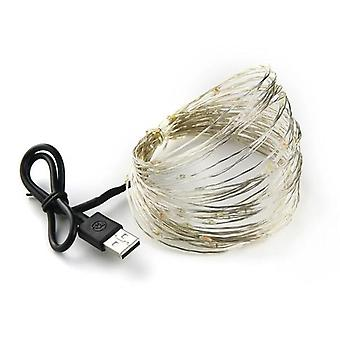 Led String Light Silver Wire Fairy Warm