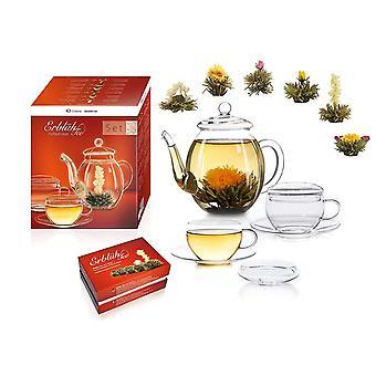 Wokex Teeblumen Mix Geschenkset Erblühtee Genießerset mit Glaskanne und Teetassen Weißtee (6
