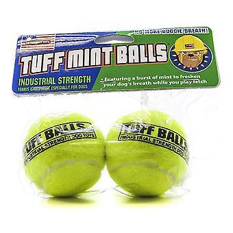 Petsport USA Tuff Mint Balls - 2 Pack