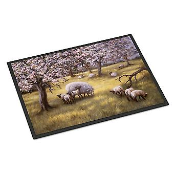 Sheep by Daphne Baxter Indoor or Outdoor Mat 18x27