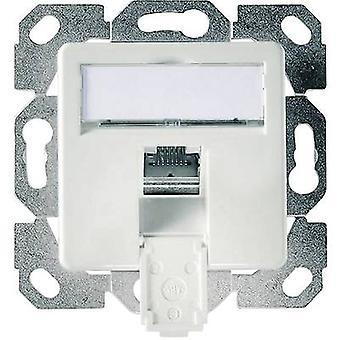 Network outlet Flush mount Insert with main panel CAT 6 1 port Telegärtner Alpine white