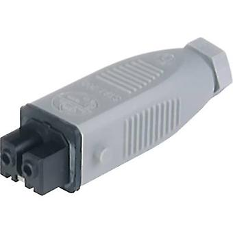 Hirschmann 932 037-106-1 Mains conector STAK Socket, número total de pinos: 2 + PE 16 A Grey 1 pc(s)