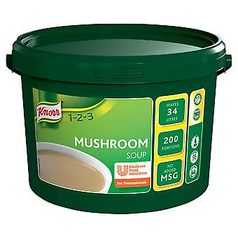 Knorr Professional Mushroom Soup Mix