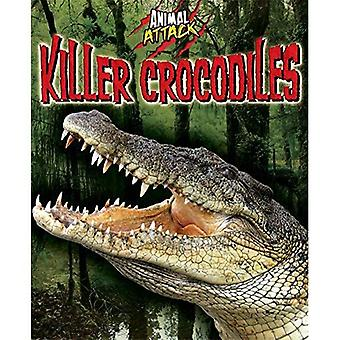 Attaque d'un animal: Crocodiles tueuses