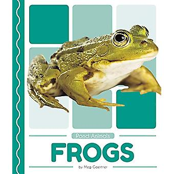 Pond Animals - Frogs by Meg Gaertner - 9781641855792 Book