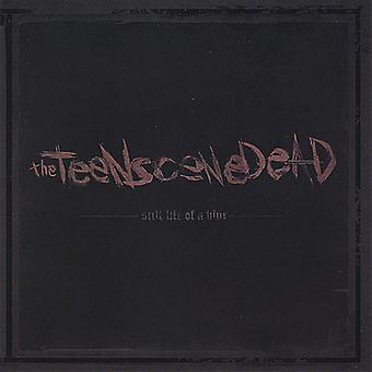 Giovani scena Dead - Still Life di un'importazione USA sfocatura [CD]