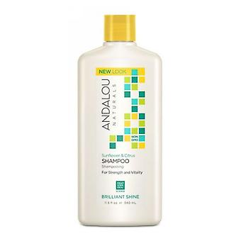 Andalou Naturals Healthy Shine Shampoo, Sunflower and Citrus 11.5 oz