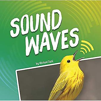 Sound Waves (Waves in Motion)