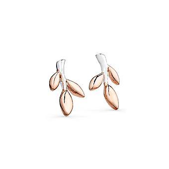 Sterling Silver Stud Earrings - Origins Stem + Leaves + Rose Gold Plated