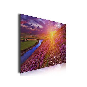 Tableau photo paysage islande montagne fleuri , 80x50cm