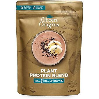 Plant Protein Blend - 250 grams