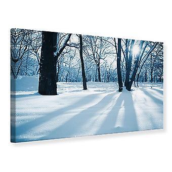 Canvas afdrukken zonder de bospaden In de sneeuw