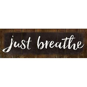 Just Breathe Poster Print by Marla Rae (18 x 6)