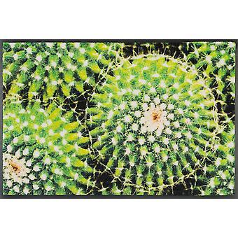wash+dry Fußmatte Spiny Green 50 x 75 cm waschbare Schmutzmatte