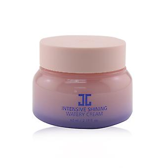 Intensive Shining Watery Cream 65ml/2.19oz