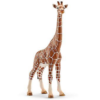 Schleich weiblich Giraffe