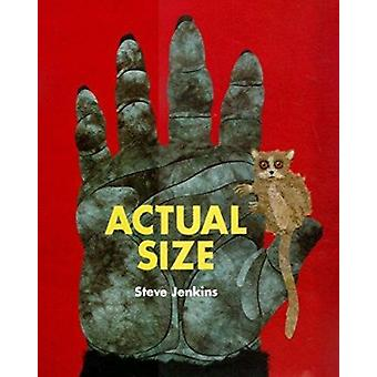 Actual Size by Steve Jenkins - 9780618375943 Book