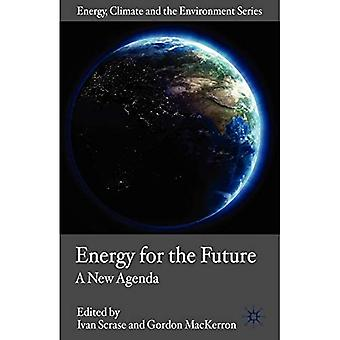 Energy for the Future: A New Agenda (Energy, Climate and the Environment)