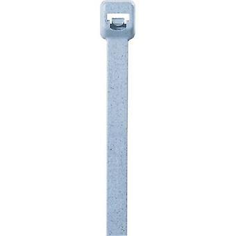 Panduit ASTN-255 PLT2I-C86 Kabelslips 203 mm 3,40 mm Blå detekterbar 100 st