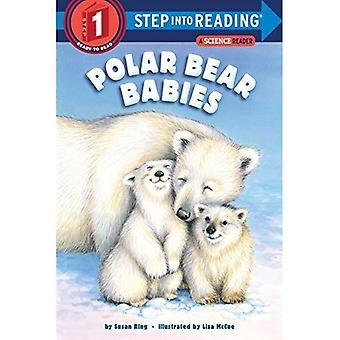 Orso polare Babies (passaggio in lettura)