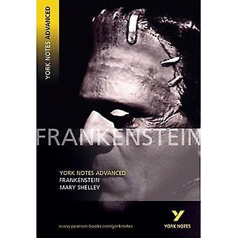 Frankenstein (York Notes geavanceerde)
