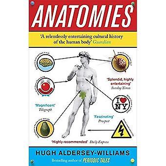 Anatomía: El cuerpo humano, sus partes y las historias dicen
