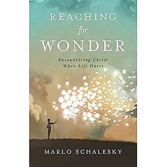Atteignant pour Wonder: rencontrer le Christ quand la vie fait mal