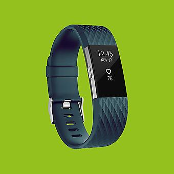 For Fitbit batch 2 plastic / silicone bracelet for women / size S blue grey watch
