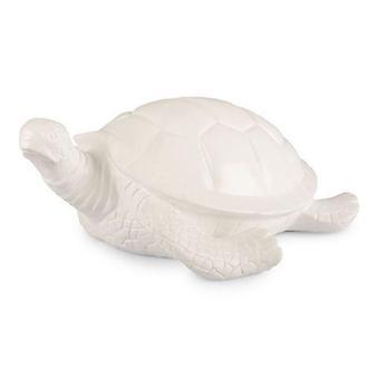 Turtle Big