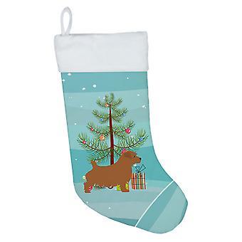 Norfolk Terrier Merry Christmas Tree Christmas Stocking