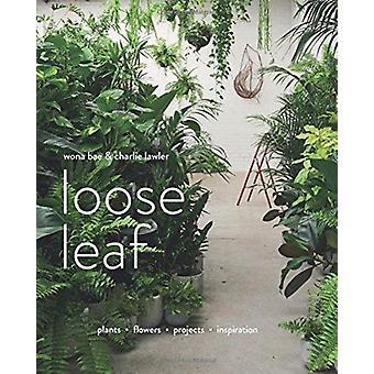 Loose Leaf by Bae