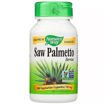 Nature's way saw palmetto berries, 585 mg, capsules, 100 ea