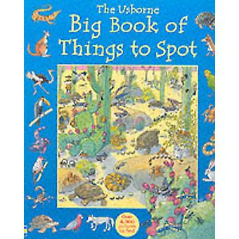 Big Book of Things to Spot by Ruth Brocklehurst