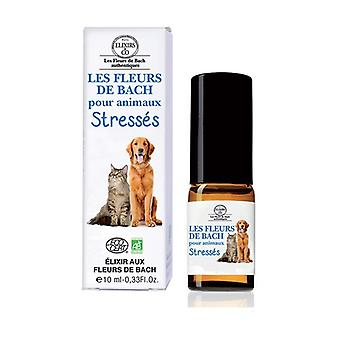 Stressed animals Bach flowers 10 ml of floral elixir