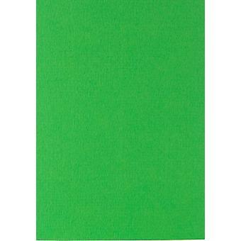 Papicolor 6X Cartón 210X297mm-A4 Hierba Verde