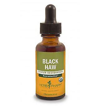 Herb Pharm Svart Haw Ekstrakt, 4 Oz