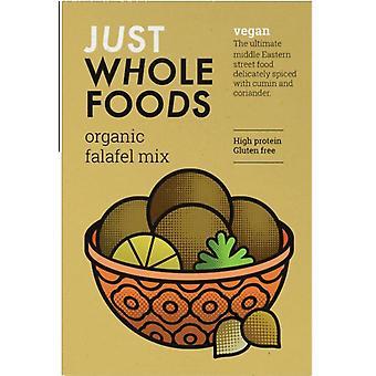 Nur Vollwertstoffe Bio Vegan Falafel Mix 120g x6