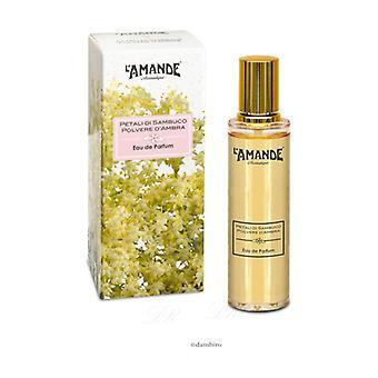 Eau De Parfum Amber Powder 50 ml