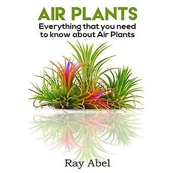Air planten