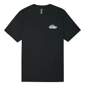 Converse Classic Script 10021516A01 universel toute l'année t-shirt homme