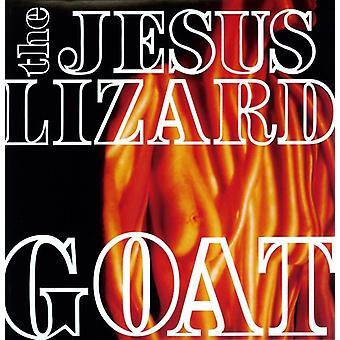Jesus Lizard - importation USA chèvre [Vinyl]