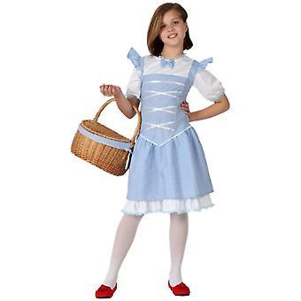 Børns kostumer piger Troldmanden fra oz, dorothy kostume