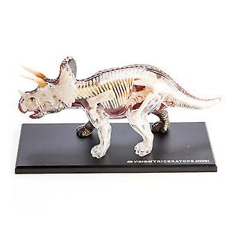 4D anatomie Triceratops dinozaur