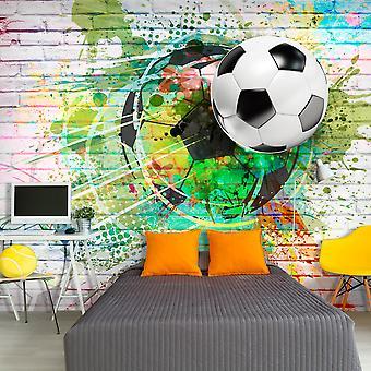Fototapetti - Colourful Sport