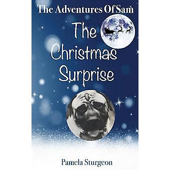 The Adventures Of Sam  The Christmas Surprise by Sturgeon & Pamela
