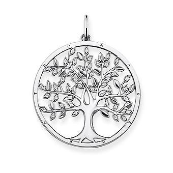 توماس سابو شجرة قلادة الحب