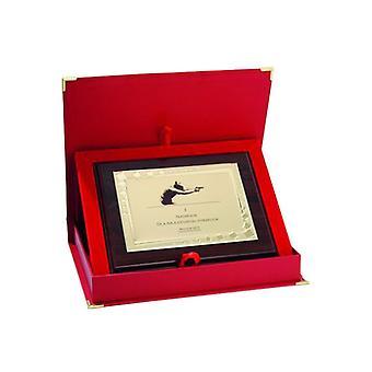 Plastic Diploma met een gegraveerde metalen plaat + koffer